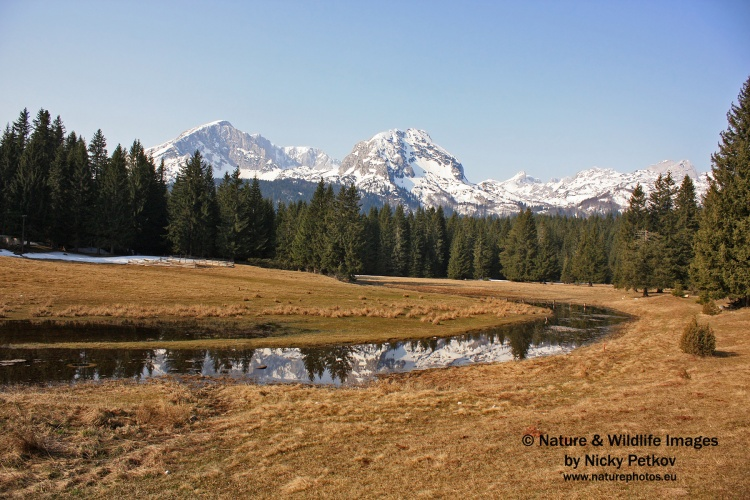 WildLife Photos of Landscapes, Mountains, Durmitor Mountain,