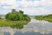 WildLife Photos of Ivailovgrad Reservoir, BG106